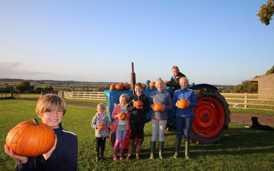 Pick your own pumpkins and support The Myton Hospices